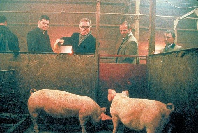 Босса итальянской мафии заживо скормили свиньям. Изображение № 1.