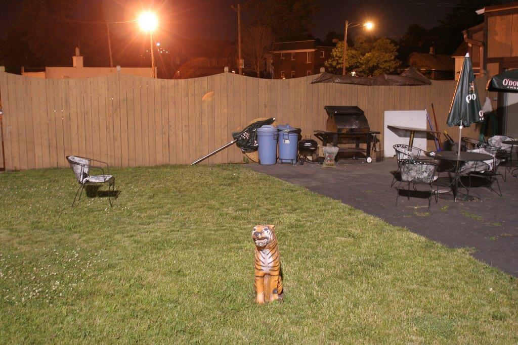 Как живут обитатели детройтских окраин. Изображение № 15.