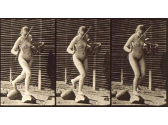 Фотографии из известного альбома «Animal Locomotion», 1887. Изображение № 24.