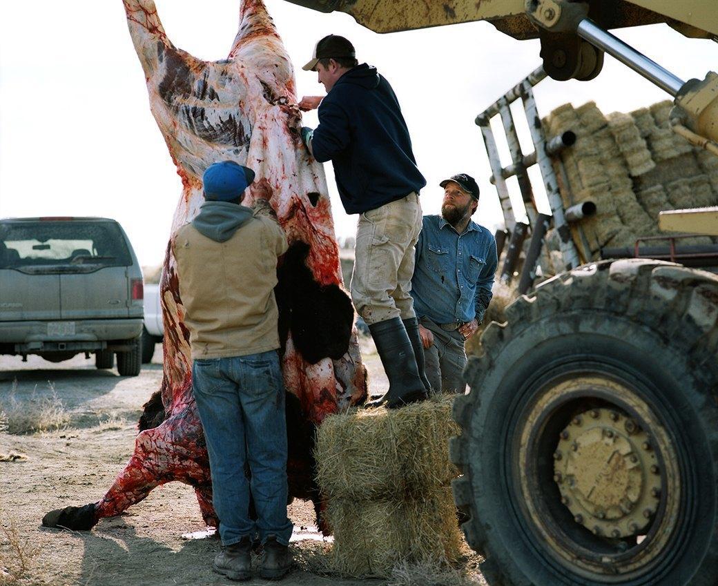 Бытовая жизнь работников бизоньего ранчо в США . Изображение № 22.