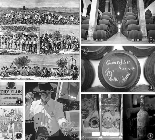 Крепкий малый: Путеводитель по крепленому испанскому вину — хересу. Изображение № 1.