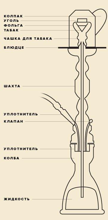 Ультимативный гид по кальянам. Изображение № 4.