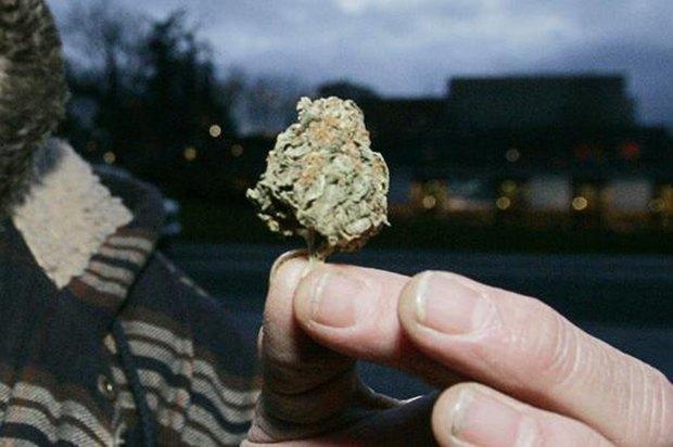 В Мэриленде 35-летняя женщина нашла марихуану в своей картошке фри . Изображение № 1.
