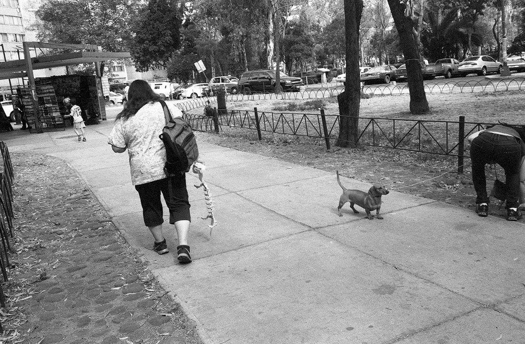 Фотоблог скейтера: Алексей Лапин о поездках в Мексику и Белоруссию. Изображение № 13.