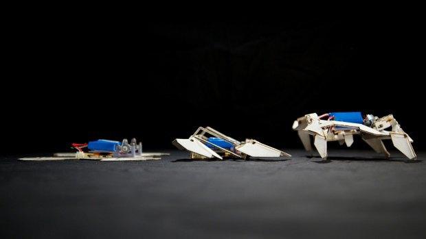 Робот-оригами собрал сам себя и ушёл. Изображение № 1.