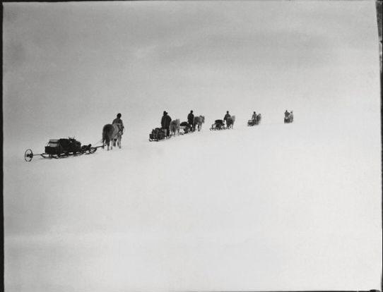 Считавшиеся утерянными фотографии Антарктики были выставлены в британских музеях. Изображение № 4.