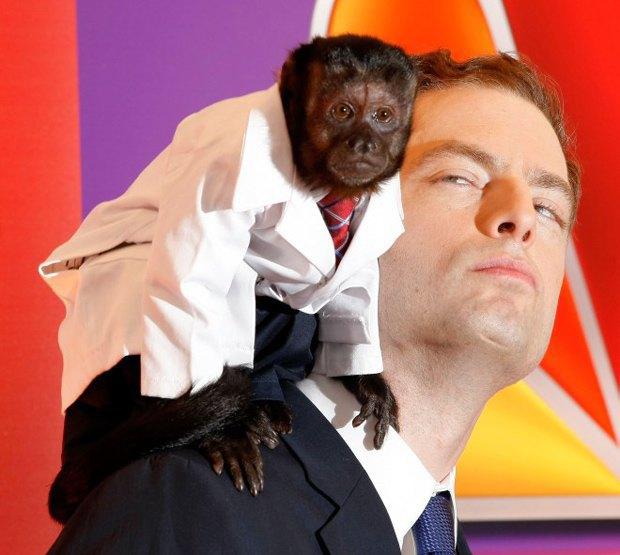 10 обезьян, ставших медийными персонами. Изображение № 3.
