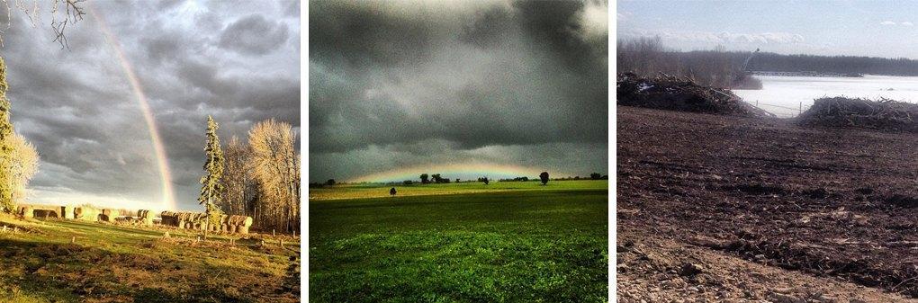Что публикуют в своих Instagram фермеры разных стран. Изображение № 8.