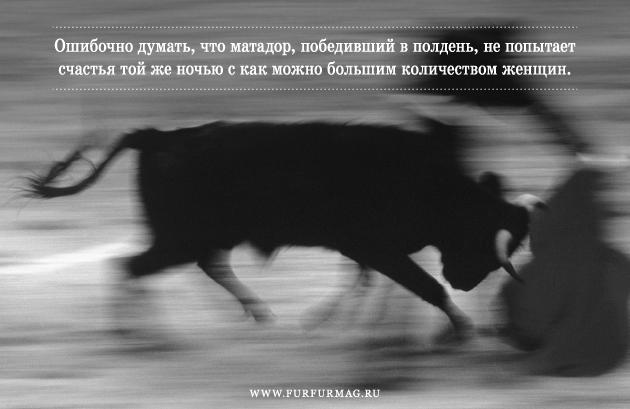 «Бык может отнять у тореро жизнь, но не славу»: Кодекс чести матадоров. Изображение № 6.