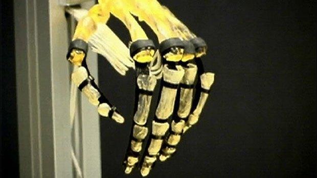 Созданы искусственные мускулы, поднимающие в 80 раз больше собственного веса. Изображение № 1.