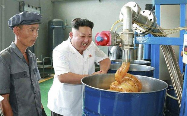 Поход Ким Чен Ына на завод смазок стал новым интернет-мемом . Изображение № 6.