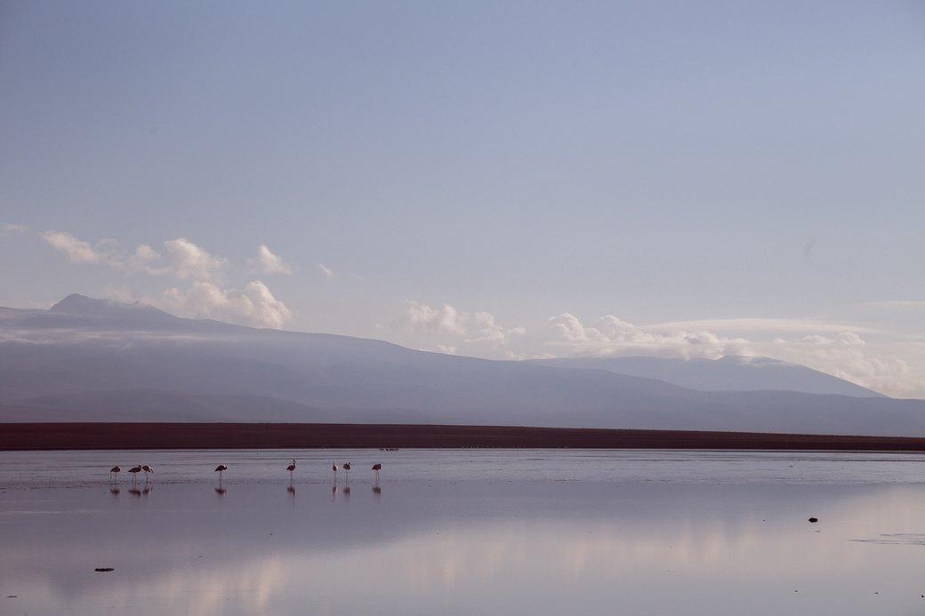 Буря в пустыне: Фоторепортаж с ралли «Дакар-2014» . Изображение № 31.