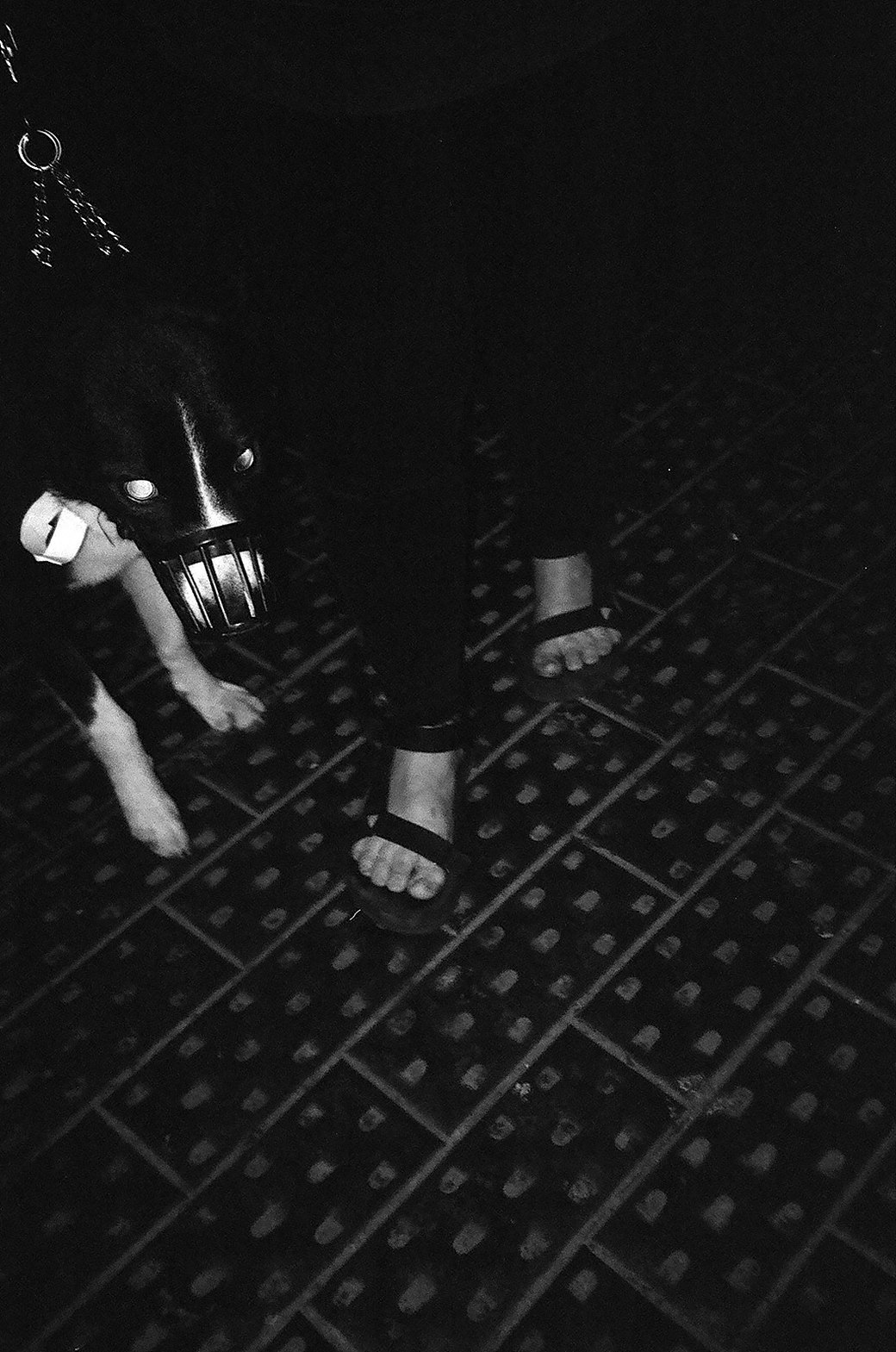 Фоторепортаж: Вторая «Скотобойня» в Переведеновском переулке. Изображение № 57.
