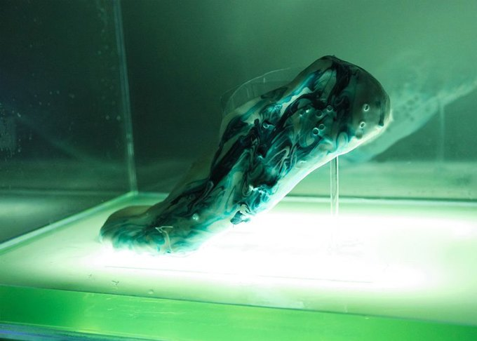 Дизайнер из Великобритании разрабатывает «живые» кроссовки из протоклеток. Изображение № 1.