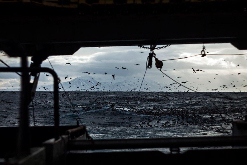 Как я бросил всё ради работы на морском судне. Изображение № 3.