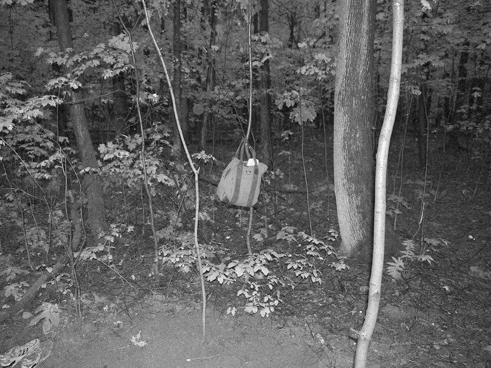 Финал эксперимента: Редакция FURFUR выкопала хэритейдж-лук. Изображение № 42.