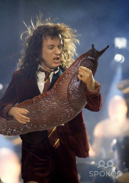 Выложены фото рок-музыкантов с огромным слизнем вместо гитары. Изображение № 5.