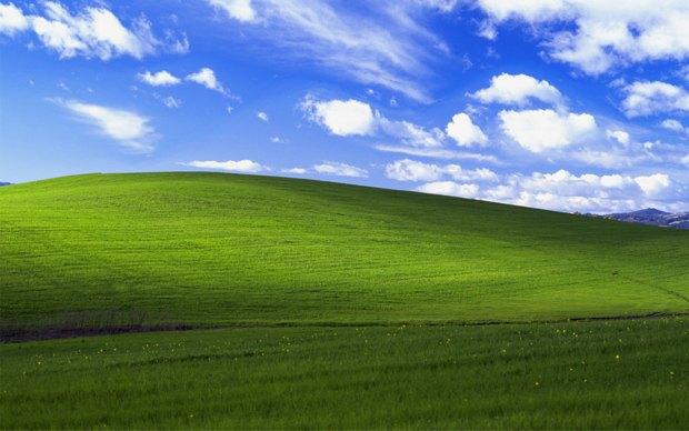 В Калифорнии загорелась долина из заставки Windows XP. Изображение № 1.