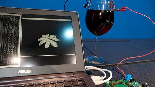 Intel представили работающий на вине компьютер. Изображение № 1.