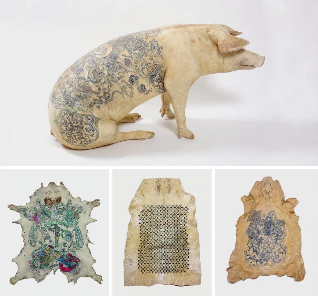 Всё о татуировках на свиньях. Изображение № 3.