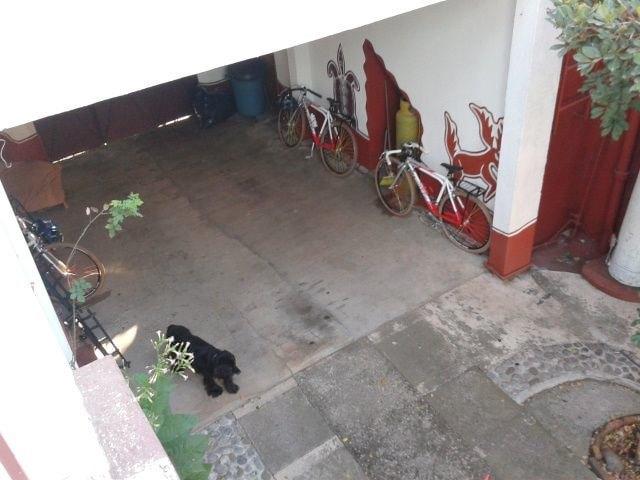 «Вся наша жизнь состоит из спусков и подъёмов»: Как я пересёк Мексику на велосипеде. Изображение № 4.