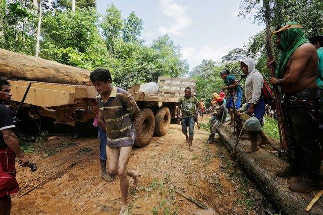 Индейцы Амазонии открыли охоту на браконьеров. Изображение № 7.