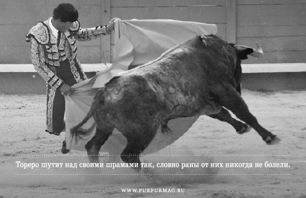 «Бык может отнять у тореро жизнь, но не славу»: Кодекс чести матадоров. Изображение № 2.