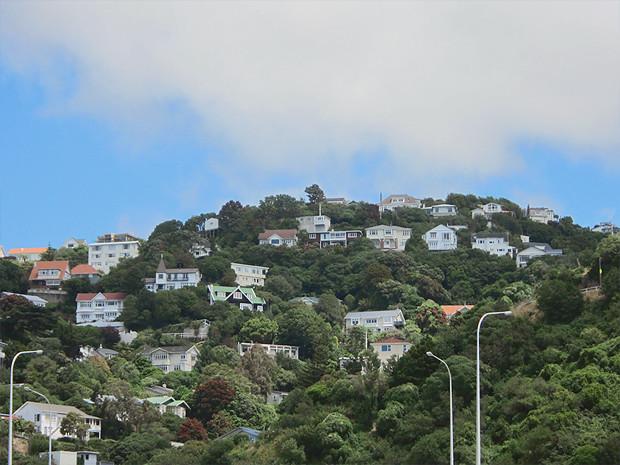 Прыгну со скалы: Как я объехал Новую Зеландию, чтобы совершить прыжок с тарзанкой с высоты 134 метра. Изображение №42.