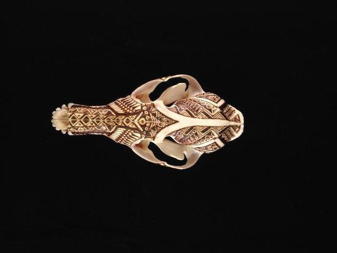 Питер Дроус: Пирография на черепах диких зверей. Изображение № 5.