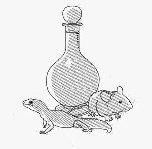 Палец, йогурт и мышонок: Из чего делают экзотические алкогольные напитки. Изображение № 8.