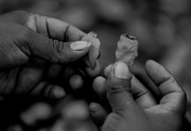Почему мировые лидеры хотят отказаться от борьбы с наркотиками. Изображение № 2.
