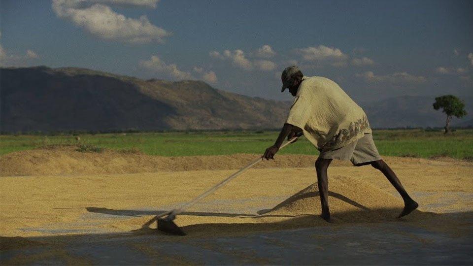 Загляните на Гаити: Как я снимал документальный фильм и искал настоящих вуду. Изображение № 7.