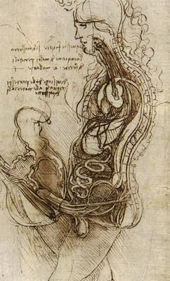 Набросок Леонардо да Винчи «Соитие». Изображение № 7.