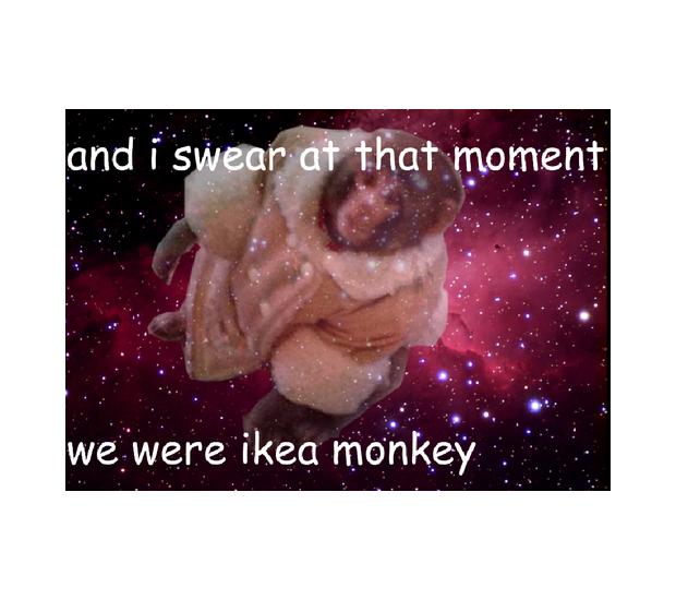 В Канаде обезьяна в пальто зашла в магазин IKEA. Изображение №21.