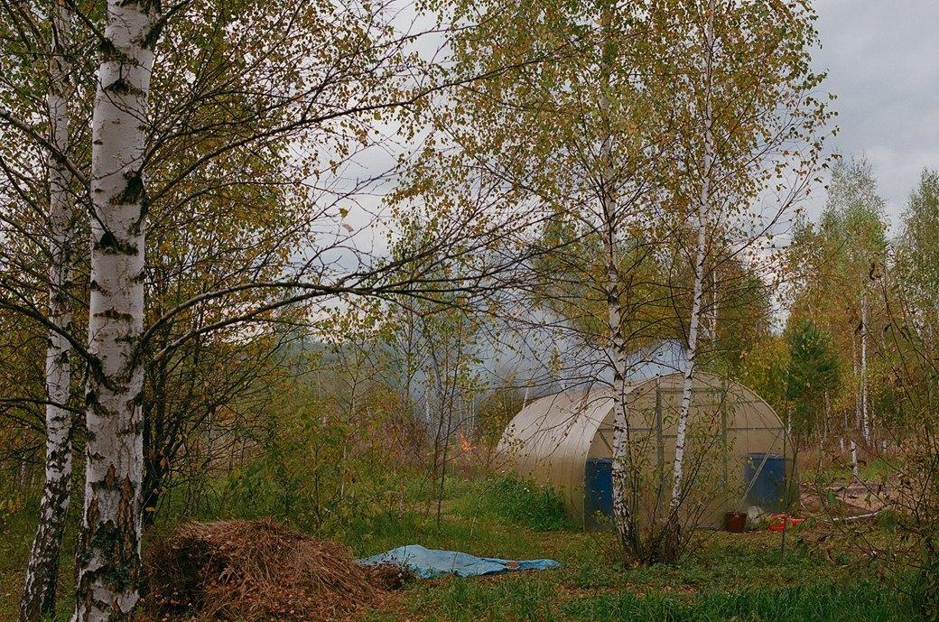 «Живая картина»: Как живет экопоселение, построенное на связи космоса и кедровых рощ. Изображение № 15.