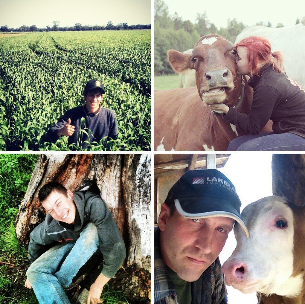 Что публикуют в своих Instagram фермеры разных стран. Изображение № 9.