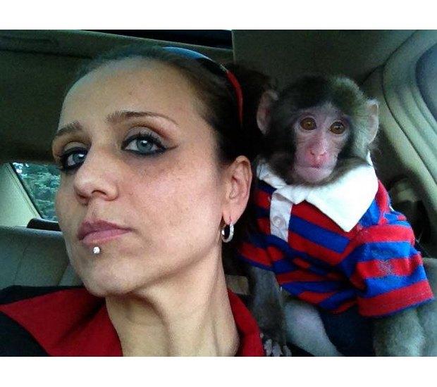 Суд по делу обезьяны в пальто из IKEA состоится в мае. Изображение № 4.