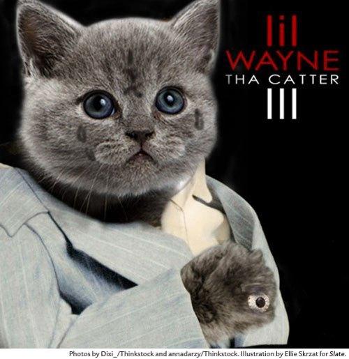 Художница поместила котов на обложки культовых рэп-альбомов. Изображение № 1.
