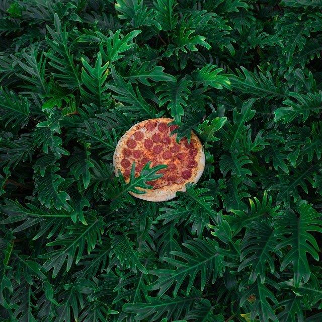 Pizza in the Wild: Приключения пиццы пепперони в проекте Джона Пола Дугласа. Изображение № 7.