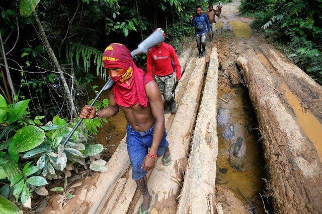 Индейцы Амазонии открыли охоту на браконьеров. Изображение № 3.