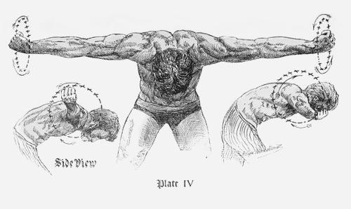 Спорт для занятых людей: Отрывок из пособия по физкультуре начала прошлого века. Изображение № 6.
