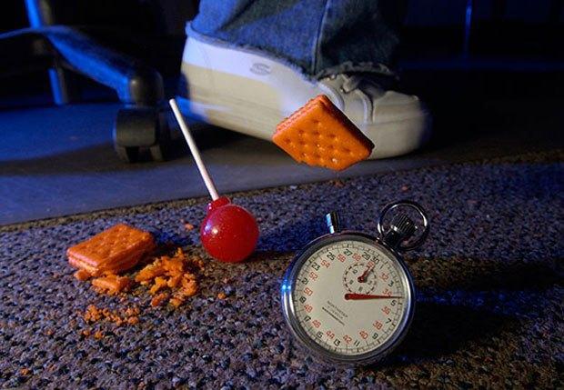 Найдено научное обоснование «правилу 5 секунд» об упавшей на пол еде. Изображение № 1.