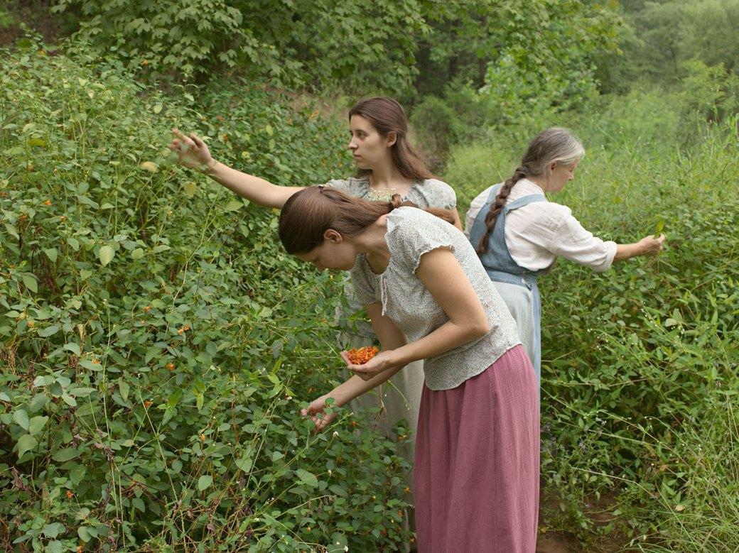 Естественный порядок: Как живут американские отшельники в разных уголках страны. Изображение № 10.