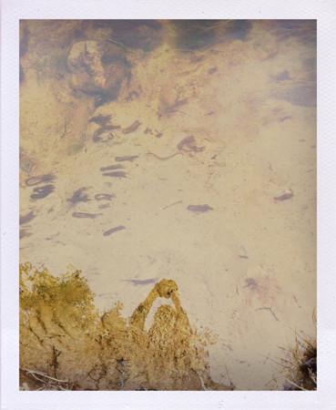 Фоторепортаж: Как я плавал на каяке. Изображение № 7.