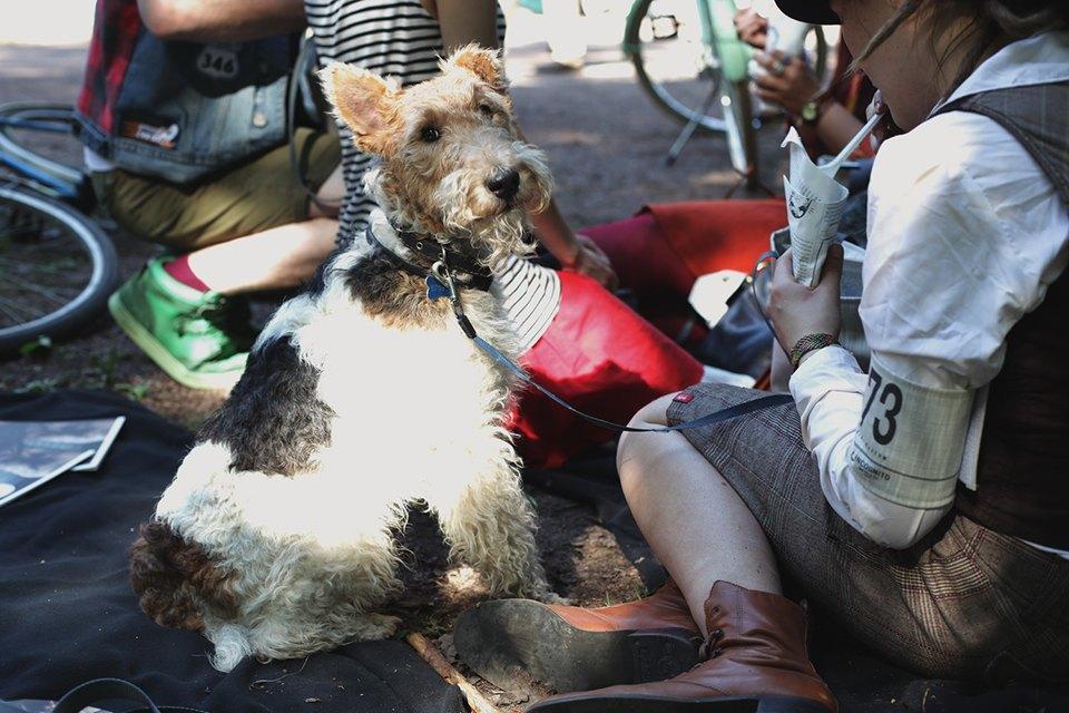 Детали: Репортаж с велозаезда Tweed Ride Moscow. Изображение № 15.