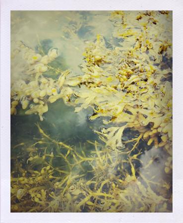 Фоторепортаж: Как я плавал на каяке. Изображение № 16.