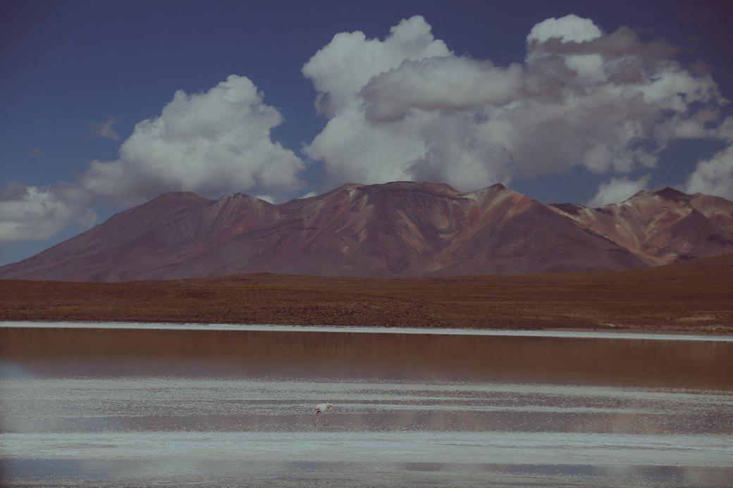 Буря в пустыне: Фоторепортаж с ралли «Дакар-2014» . Изображение № 17.