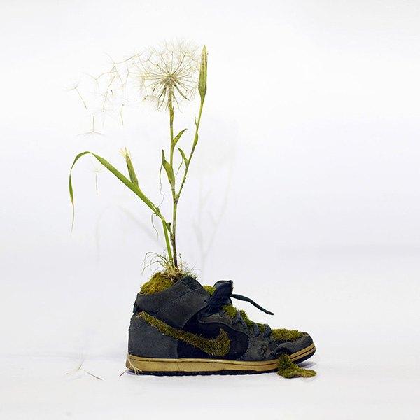 «Just Grow It!»: Известные модели кроссовок Nike из растений и цветов. Изображение № 2.