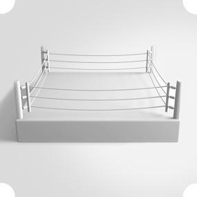 Боксерский ринг представляет собой квадрат со сторонами 6,1 метров, высота канатов составляет 1,3 метра. Изображение № 16.