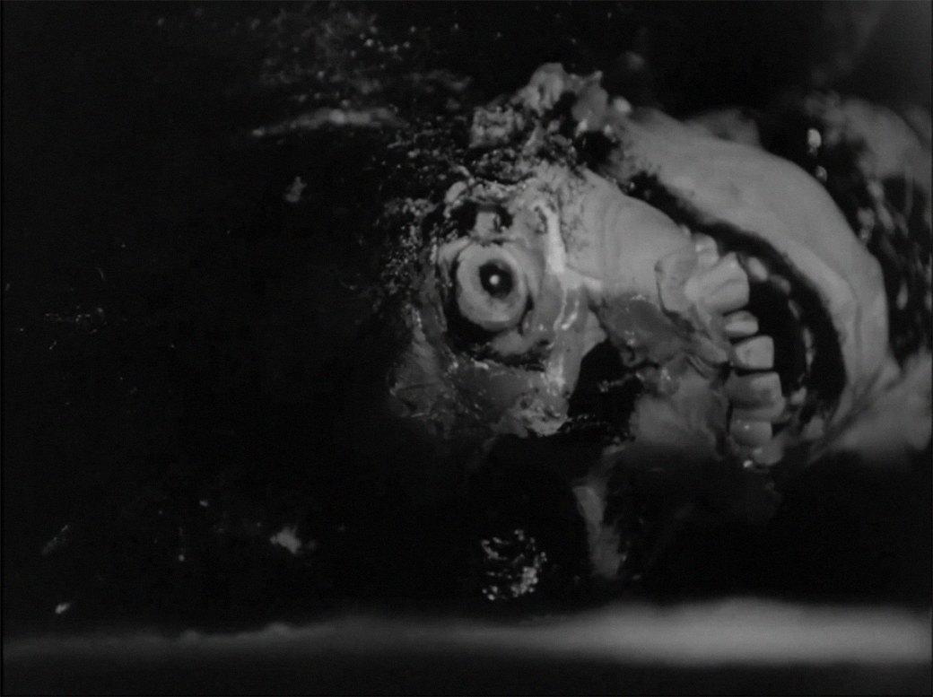 Почему люди не зря боятся зомби-апокалипсиса. Изображение № 2.